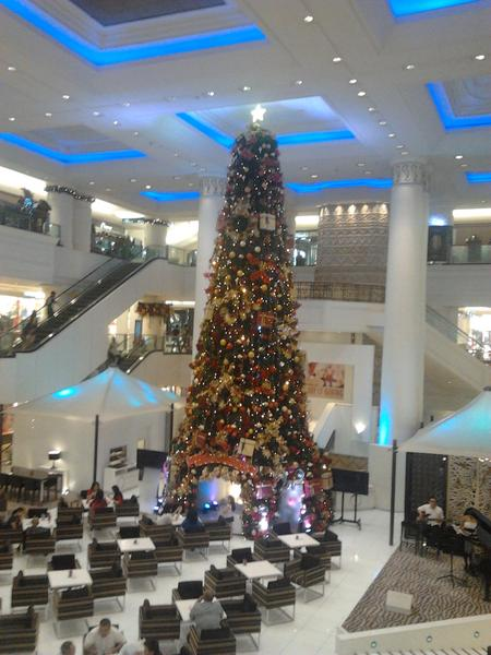 a christmas tree http://t.co/9i0z5y82
